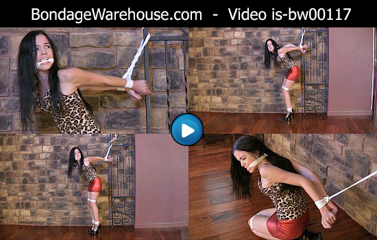 Sample Clip - WMV format - Jessica Anne