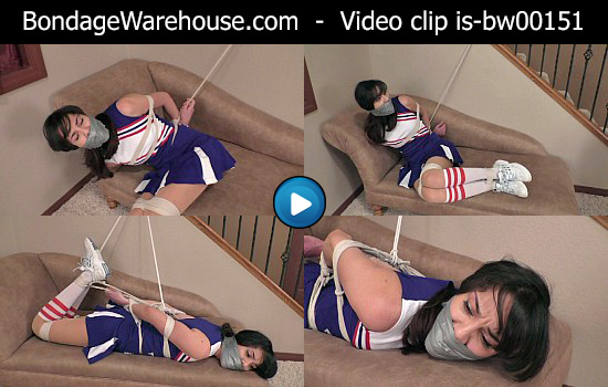 Sample Clip - WMV format